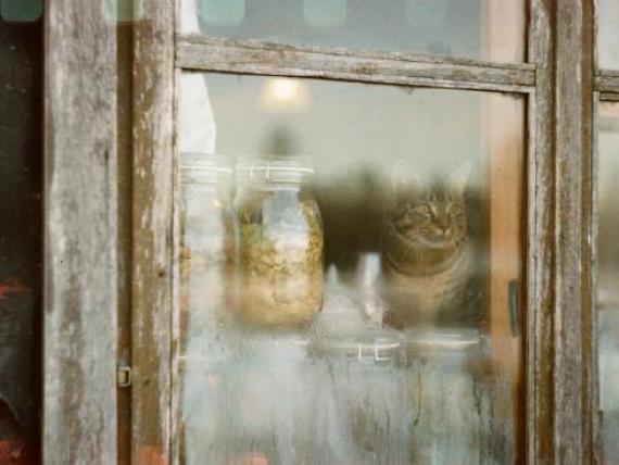 """Egitas Galiņas fotogrāfiju izstāde """"Sajūti Latviju"""""""