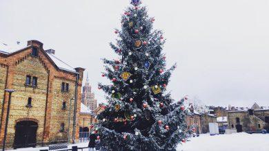 """Rīgā norisinās vides objektu festivāls """"Ziemassvētku egļu ceļš"""""""